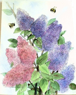Lilacs Botanical Watercolor Nature Art Painting