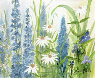 wildflower illustration watercolor